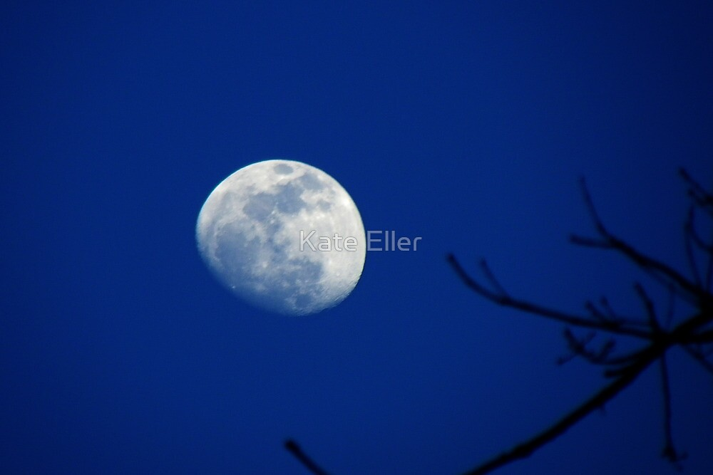 Carolina Moon Keep Shining by Kate Eller