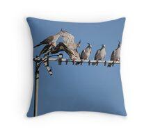 Birds On A Wire... err... Antenna Throw Pillow