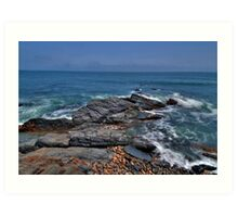 Rocky Shore- Newport Art Print