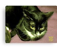 """IittyBitty Kitty sez: """"It's Doubtful"""" Canvas Print"""