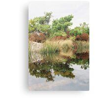 Mirrored Tall Grass Canvas Print