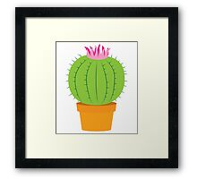 Single green round flowering cactus Framed Print