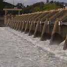 The Nimbus Dam Release by the57man