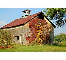 Country Side Barn Photographic Print