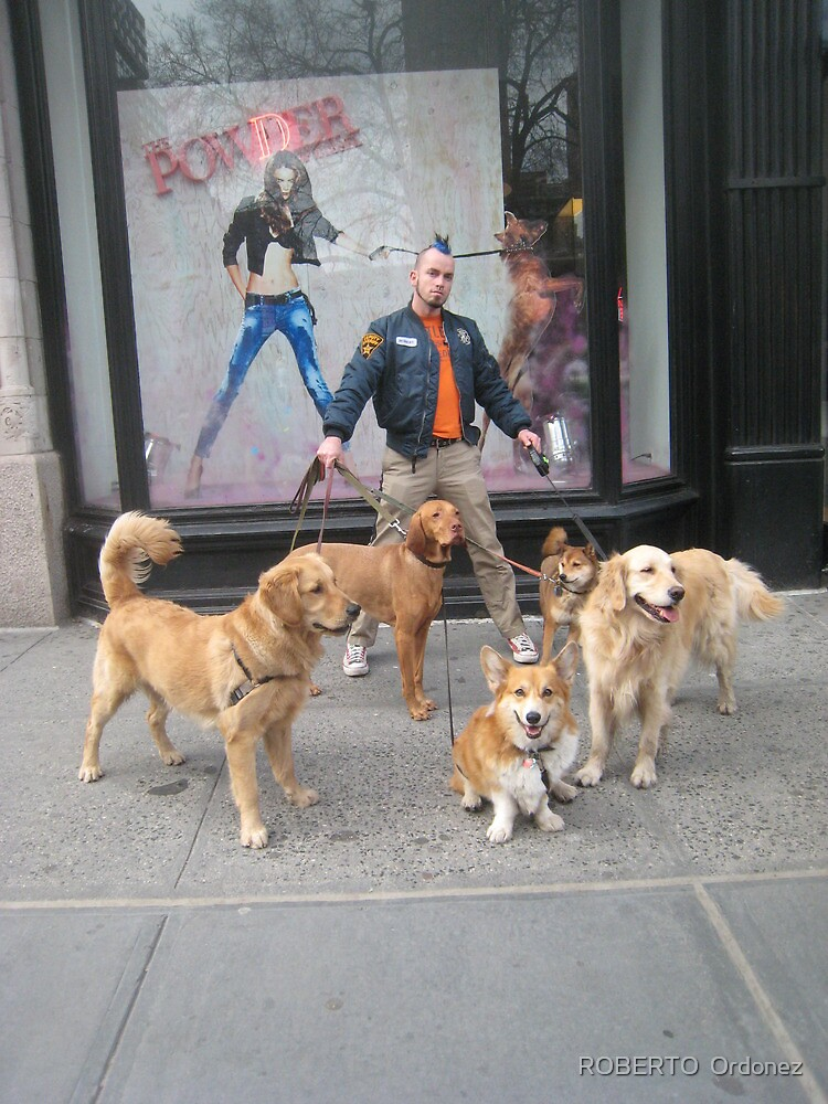 Dog master by BOBBYBABE