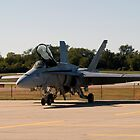 FA-18 Hornet by Anthony Roma