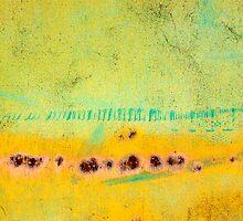 terra by Andrew Bradsworth