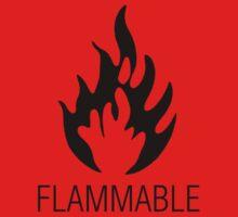 Flammable by Harvey Schiller