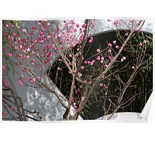Chinese style plum blossom garden Poster