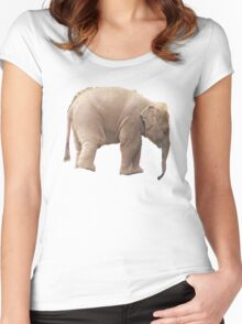 Baby Elephant Tee Women's Fitted Scoop T-Shirt