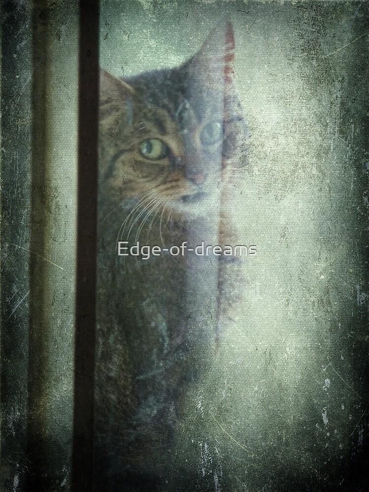 Let me in  by Edge-of-dreams