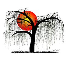 Weeping Willow Tree at Sunset Photographic Print