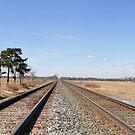 Tracks Farmland Indiana by mltrue