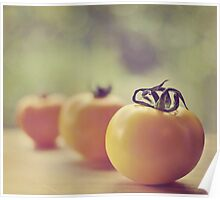 tomatoes.. Poster
