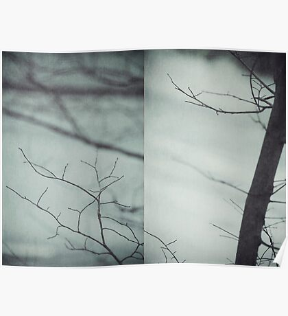 Silver Morning Branches Poster