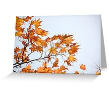 advanced Autumn Greeting Card