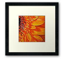 Hot Orange Gerbera flower Framed Print