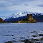 Castle on the Loch by caledoniadreamn