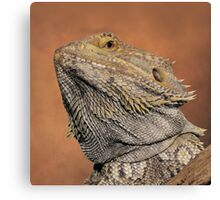 My best side............ Canvas Print