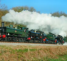 5 Steam Loco's on the South Devon Railway by Nathan83a