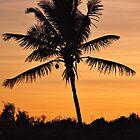Caribbean Islands Calendar by Leon Heyns