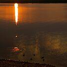 Sunset Paddle by Justin Seymour