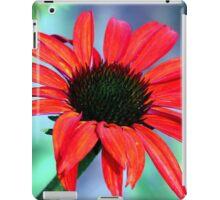 Pastel Pedals iPad Case/Skin