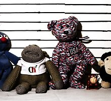 The Unusual Suspects by James  Leader