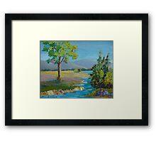 Prairie landscape Framed Print