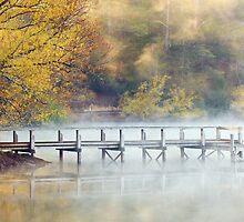 Lake Daylesford Dawn, Victoria, Australia by Michael Boniwell