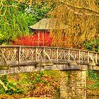 Garden Bridge by jimclark