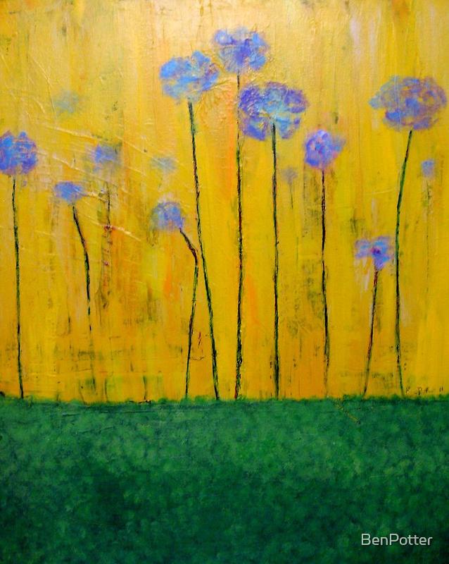 Flower Field by BenPotter