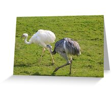 Strolling and chatting Greeting Card