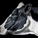 Holstein Friesian Dairy Cow Portrait by Brent Schreiber