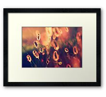 A sunset to remember Framed Print