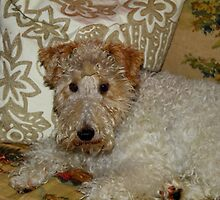 Winston. The Wire Fox Terrier by Trina King