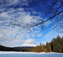 Mt. Hood from Trillium Lake - Winter (wide) by Tula Top