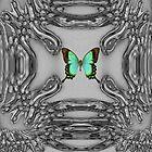 My Green Butterfly by Deborah Lazarus