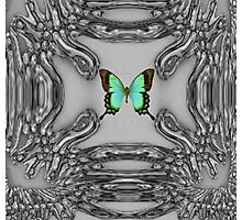 My Green Butterfly Photographic Print