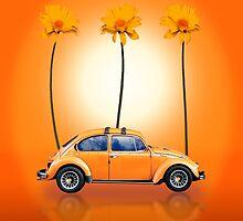 Volkswagen Beetle by RusticShiraz
