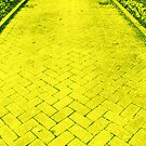 Yellow Brick Road by Rachel Williams