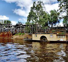 Idle on the Murray by Steven  Agius