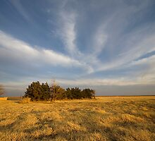 Fading Light- West Texas by StonePics