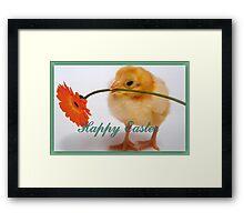 Happy Easter Chick  Framed Print