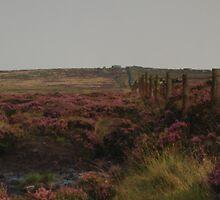 Rombalds Moor by WatscapePhoto