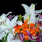 Lilies by Moonlake