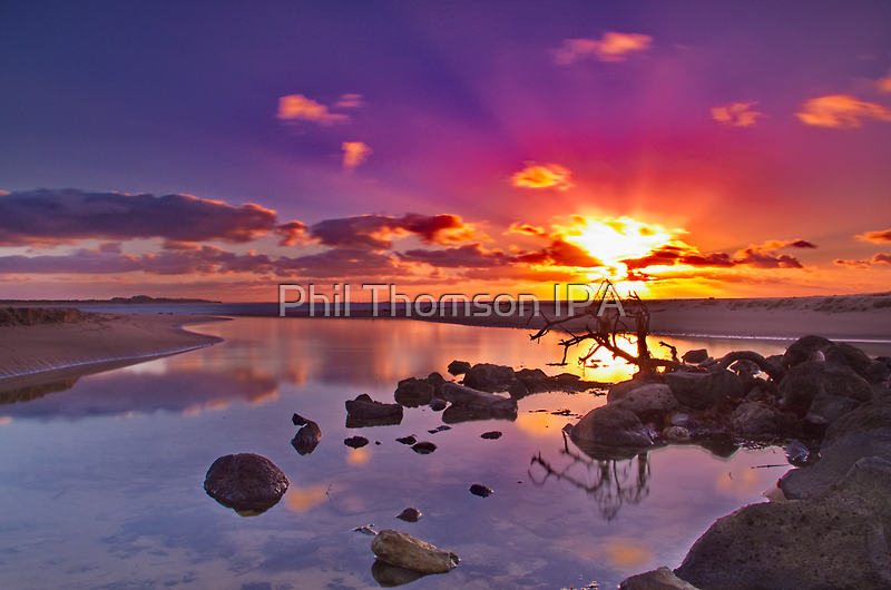 """""""Dayspring at Fisherman's Beach"""" by Phil Thomson IPA"""
