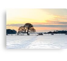 Winters Sunset Canvas Print