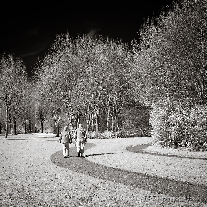 Walking in the Park with Eloise... by George Parapadakis (monocotylidono)