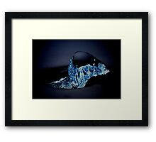 Splash in the Night Framed Print